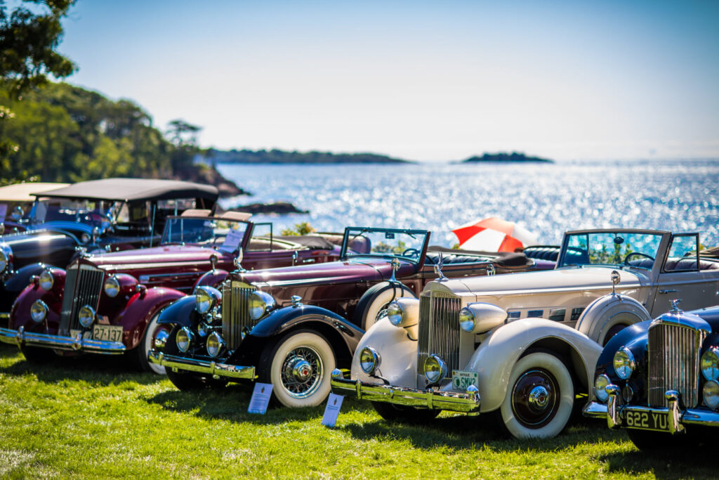 Waterfront Car Collection