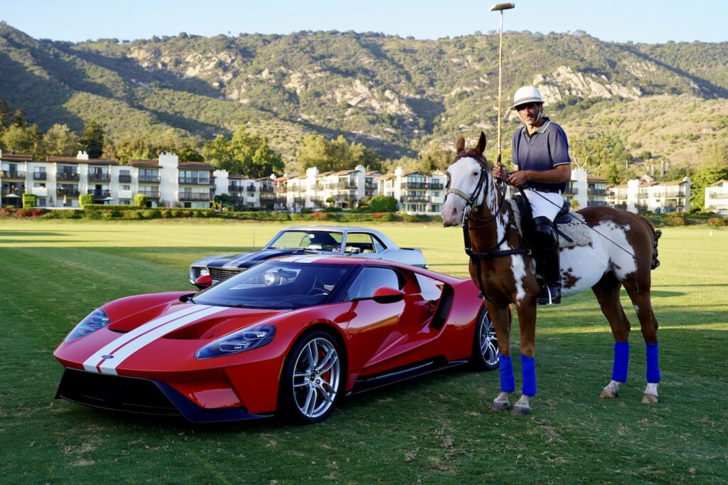 polo horses with car colection